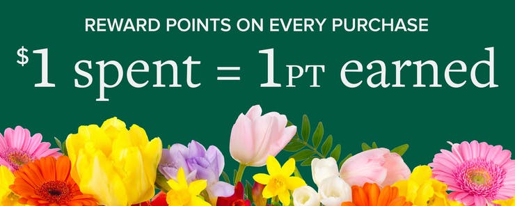 Earn reward points on every purchase. One dollor equals one point.