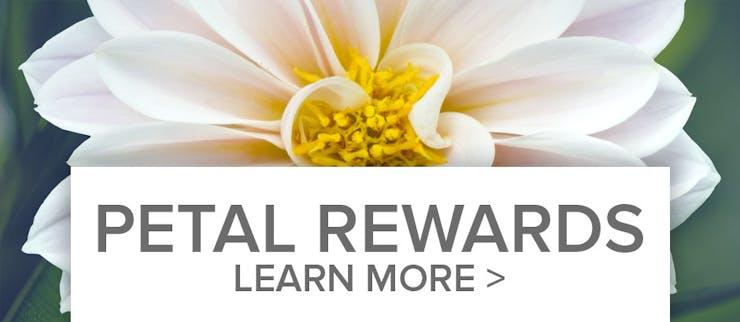 Petal Rewards